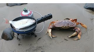 Video Catch n' Cook Dungeness Crab and Perch in a Sea Cave! MP3, 3GP, MP4, WEBM, AVI, FLV Maret 2019
