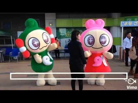 ゆるキャラ 大集合! 〜 鳥取県 〜【ご当地キャラクター】