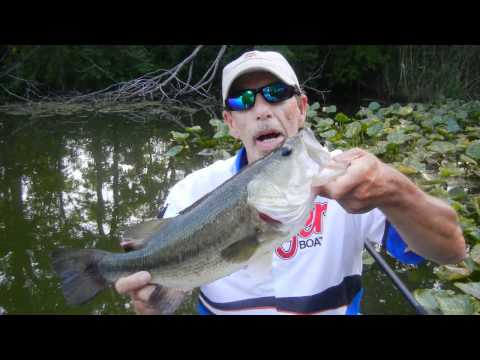 SUMMER BASS FISHING JIG TIPS THE BASS COLLEGE MILLER TIME