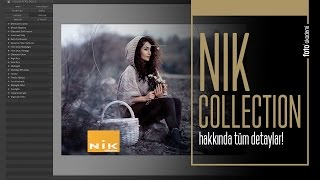 Google Nik Collection -
