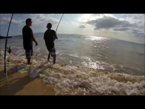 O'io fishing from the beach – Hawaii Apr 2013