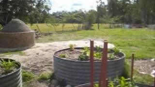 Wondai Australia  City pictures : Wondai Permaculture Garden
