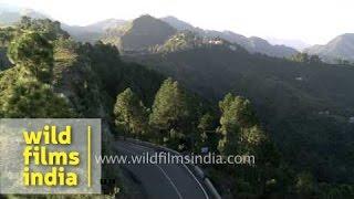 Solan India  city photos : Hills and valleys of Arki, Solan district, Himachal Pradesh