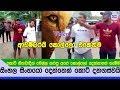 සිය ගණනකගෙන් මුහුණට මුහුණ ගේම ඉල්ලපු සිංහල වීරයෝ දෙන්නා Video - Anuradhapura Heros