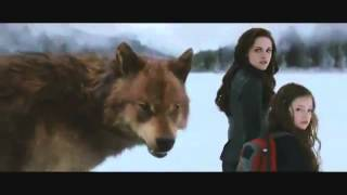 Watch The Twilight Saga Breaking Dawn Part 2  (2012) Online