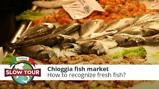 Chioggia Italy  city photos gallery : Chioggia fish market | Italia Slow Tour