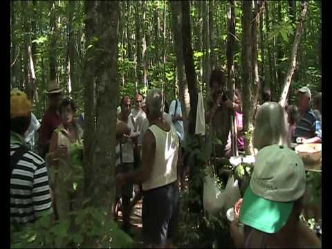 Il 15 Agosto nei boschi della Falanga - Terza Parte