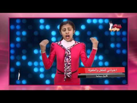 نجلاء حميد - تقيم الفنانة امل دباس