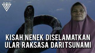 Video Kisah Nenek Diselamatkan Ular RAKSASA dari Tsunami MP3, 3GP, MP4, WEBM, AVI, FLV Oktober 2018