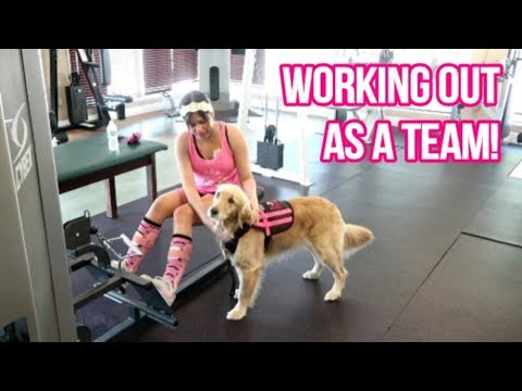 🏋 Bringing Your SERVICE DOG To The GYM: Tips And Tricks! 🐕