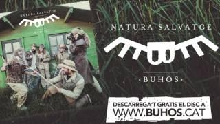 Download Lagu Buhos - Sol naixent Mp3