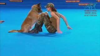 El Perro que Sabe Hacer RCP