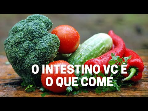 O intestino vc é o que come