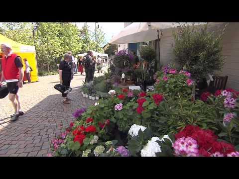 Mercato di fiori e piante a Lagundo