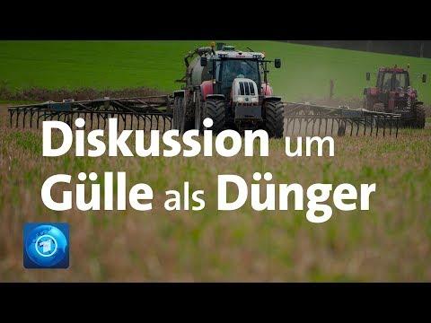 Diskussion um Gülle als Dünger in der Landwirtschaft