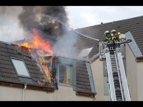 Feueralarm in Wohnheim am Hornkamp: Wespennest als Ursache festgestellt