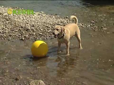 Kerbl Hundeball gelb (Art. 82274)