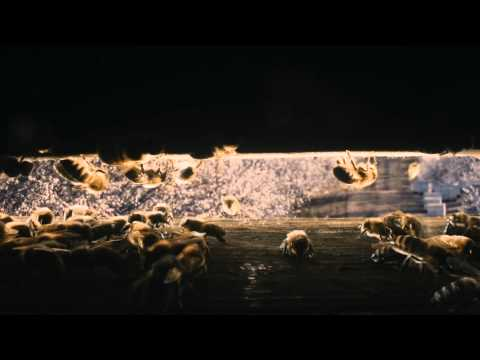 MORE THAN HONEY [Trailer]
