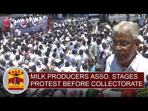 TN-Milk-Producers-Welfare-Association-stages-Protest-before-Salem-District-Collector-Office
