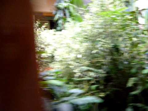 Hostal Fátima - Video