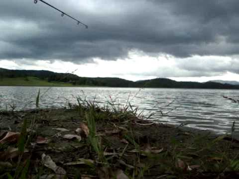 pesca de tilapia em nazare paulista