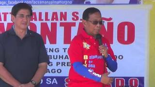 Binay: We need Honasan as crime czar