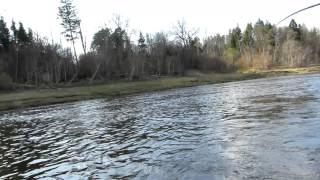 Весенняя сёмга. Салмон река. Продолжение.
