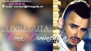 LIVIU GUTA  - BUNA DIMINEATA  ( AUDIO )