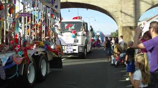 Grafton Australia  city photos gallery : Jacaraanda Floral Festival - Grafton NSW Australia