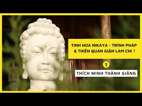 Tinh Hoa NIKAYA - Trình Pháp và Thiền Quán Giận Làm Chi ? 1