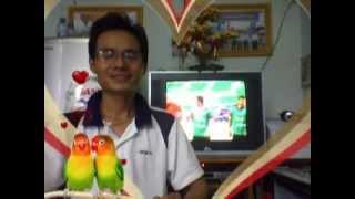 THANHQUANG1180-TRƯỜNG THCS HỒ THỊ KỶ-CÙNG BÌNH LUẬN EURO 2012