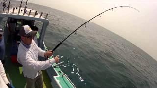 Kuala Rompin Malaysia  City new picture : Shimano Australia Fishing at Kuala Rompin