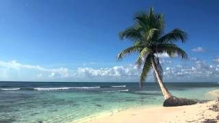 Video ♥♥ Relaxing 3 Hour Video of Tropical Beach with Blue Sky White Sand and Palm Tree MP3, 3GP, MP4, WEBM, AVI, FLV September 2019