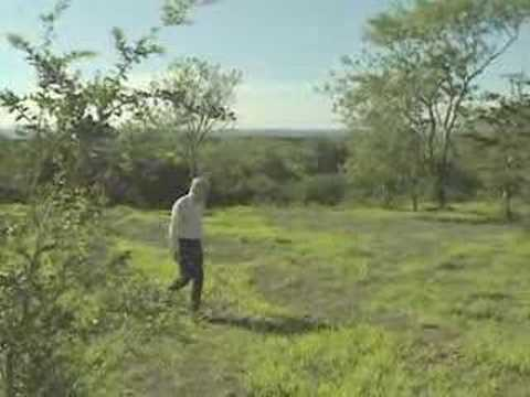 Galapagos: Darwin's Ankunft (07.02)