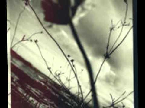 , title : 'Eros Ramazzotti - Il cammino'