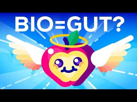 Bio-Lebensmittel sind ein Riesentrend: Ist Bio wirk ...