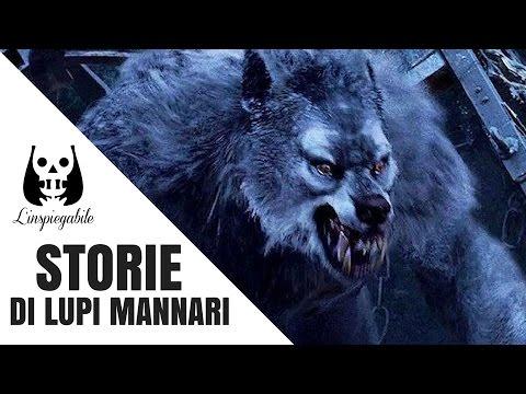 6 storie di lupi mannari credute vere