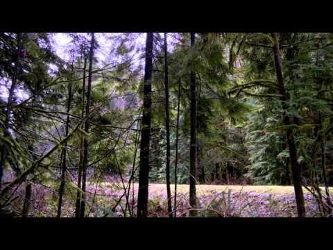 Akció film kategória   http://youtube-filmek.eu/ Akciófilmek, Filmek