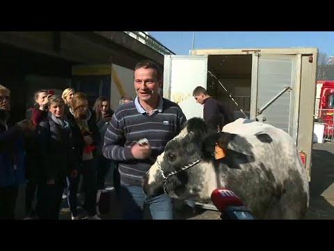Pariser Landwirtschaftsmesse im Porte de Versailles hat begonnen