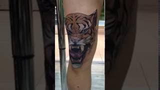 Tundercat Tiger