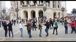 Hofheim Germany  city pictures gallery : International Rueda Flashmob Day 2015 - Germany - Frankfurt