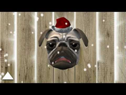 Video of Pugsy