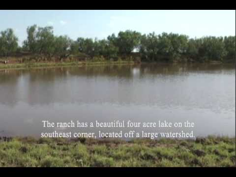 561 acres Thalia, TX