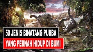 Video 50 JENIS BINATANG PURBA YANG PERNAH HIDUP DI BUMI MP3, 3GP, MP4, WEBM, AVI, FLV Oktober 2017