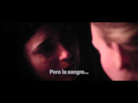 José González | Lovestain (fragmento de la película Kyss Mig) en español