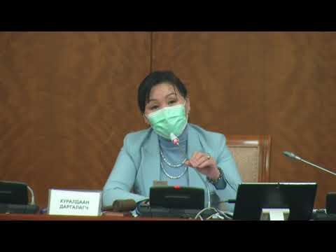 Д.Сарангэрэл: Эмэгтэйчүүдийн хүчирхийллийн эсрэг хуулинд ямар заалт орсон вэ?