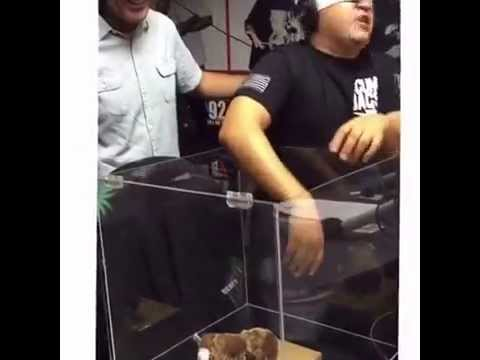 A grown man freaks out about touching a TEDDY BEAR!!