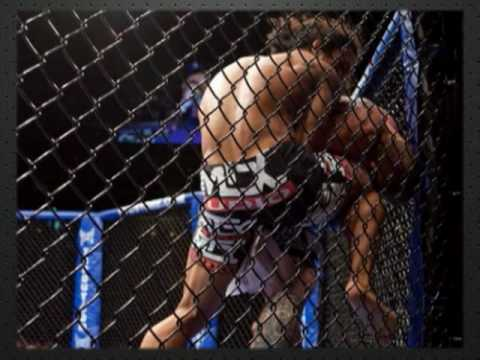 WEC 48 Aldo vs Faber Highlights and Recap