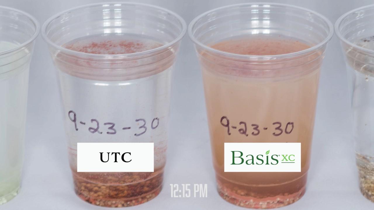Basis XC - Timelapse
