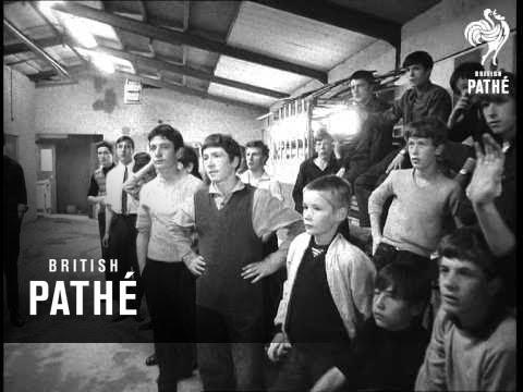 Easterhouse Gangs (1968)